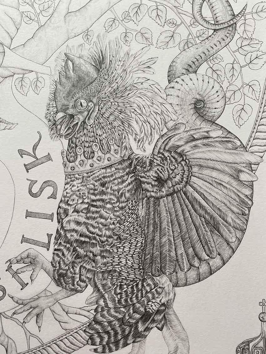 GRIFFIN & BASILISK Illustration